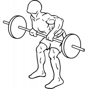 Top 10 Fitness oefeningen Rug - Fitness oefeningen, Rug