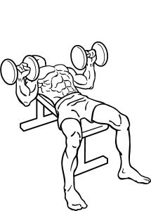 Dumbell chest press