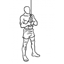 Triceps pulldown